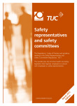 Safety representatives and safety committees – Brown Book